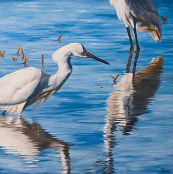 Egret Waters