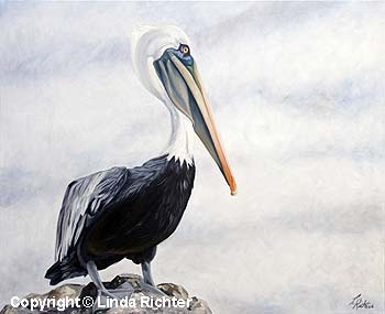 Pelican Vigil